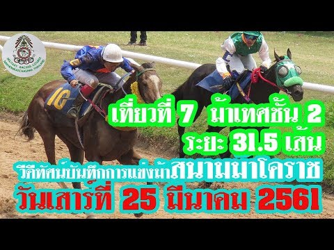 ม้าแข่งสนามโคราช 25 มีนาคม 61 เที่ยว 7 ม้าเทศชั้น 2